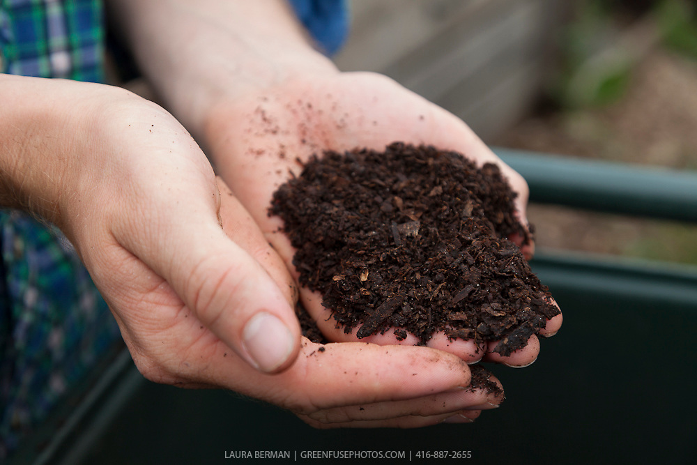 A handful of rich, dark, organic compost against a blue plaid shirt.
