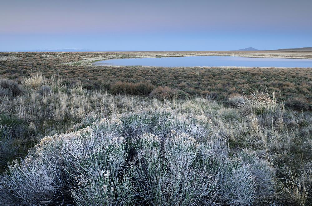 Moonrise over Paiute Lake and rabbitbrush, Hart Mountain National Antelope Refuge Oregon