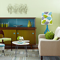 Midcentury modern style painted projects