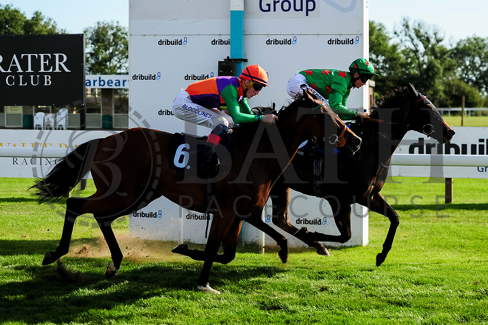 Shamshon ridden by David Egan and trained by Stuart Williams in the Sds Water Management Handicap race. Count Otto ridden by Angus Villiers and trained by Amanda Perrett in the Sds Water Management Handicap race.  - Ryan Hiscott/JMP - 14/09/2019 - PR - Bath Racecourse - Bath, England - Race Meeting at Bath Racecourse