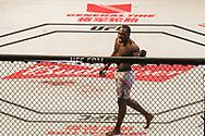 October 29, 2017 - Sao Paulo, Sao Paulo, Brazil - Oct, 2017 - Sao Paulo, Sao Paulo, Brazil - DEREK BRUNSON wins by knockout LYOTO MACHIDA (The Dragon) during UFC Fight Night, at the Gymnasium of Ibirapuera, in São Paulo, on Saturday (28) (Credit Image: © Marcelo Chello/CJPress via ZUMA Wire)