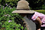 Child (6 years old) smelling the flowers. Royal Botanic Gardens, Sydney, Australia