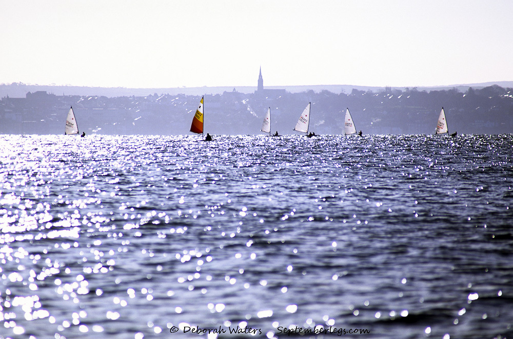One colorful sail amidst many white boats sailing on Solent water, bathed in early Spring sunshine, from Stokes Bay, Gosport, England