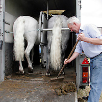 Tom Feeney clears out his box as he hopes to sell his two Connemara ponies at the Spancilhill Horse Fair on Friday.<br />