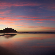 Sunset at Wharariki Beach, Golden Bay, situated just west of Cape Farewell and Farewell Spit at the northern most point of the South Island of New Zealand..Wharariki beach is approximately an hour's drive from Takaka, and is accessible by a 20 minute stroll across private, rolling farmland..The remote beach is characterised by bold cliff lines, high arches, caves, sand dunes and is home to fur-seals and seabirds. The wind sweeping the western coast has resulted in quirky, intriguing bushland. Wharariki Beach, South Island, New Zealand. 7th February 2011. Photo Tim Clayton..