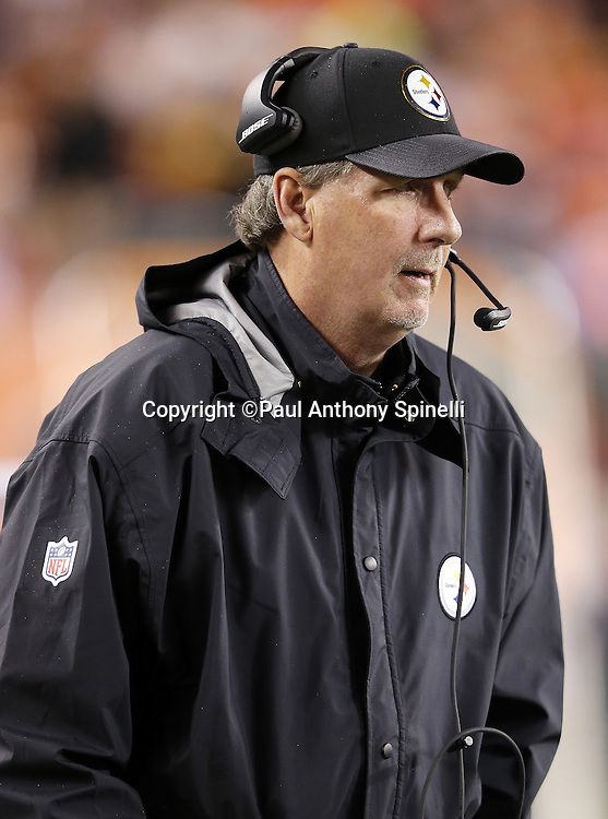 Pittsburgh Steelers defensive coordinator Keith Butler looks on from the sideline during the NFL AFC Wild Card playoff football game against the Cincinnati Bengals on Saturday, Jan. 9, 2016 in Cincinnati. The Steelers won the game 18-16. (©Paul Anthony Spinelli)