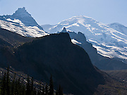 Mount Rainier rises to 14,411 feet elevation, seen from Panhandle Gap, on the Wonderland Trail, Mount Rainier National Park, Washington, USA.