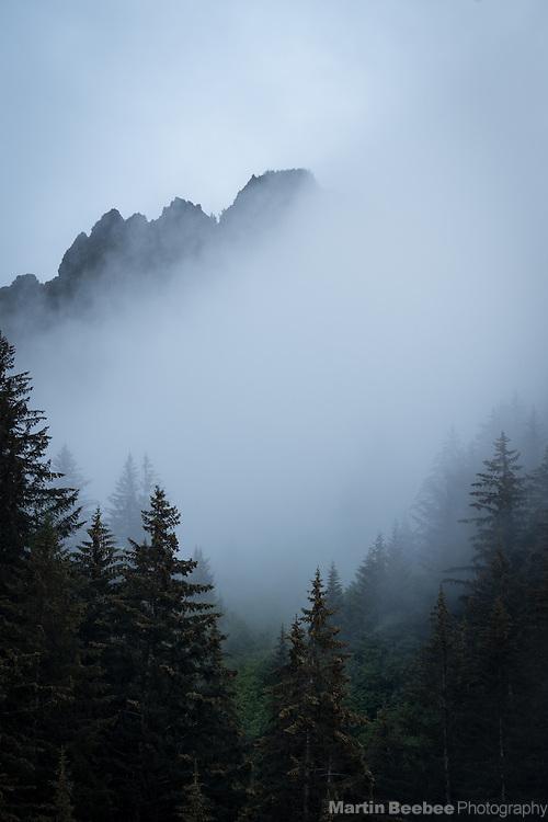 Mountain and forest in mist, Seward, Alaska