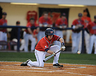 Mississippi's Kevin Mort bunts against Florida, scoring Miles Hamblin at Oxford-University Stadium on Friday, March 26, 2010 in Oxford, Miss. Ole Miss won 3-2.