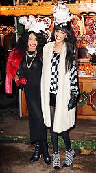© Licensed to London News Pictures. 21/11/2013, UK.  Irene Major; Elsa Major. Hyde Park Winter Wonderland VIP Opening, Hyde Park, London UK, 21 November 2013. Photo credit : Richard Goldschmidt/Piqtured/LNP