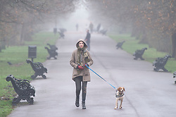 ©Licensed to London News Pictures 22/01/2020<br /> Greenwich, UK. A dog walker out and about in Greenwich Park, London.  Freezing foggy weather conditions continue across London this afternoon. Photo credit: Grant Falvey/LNP