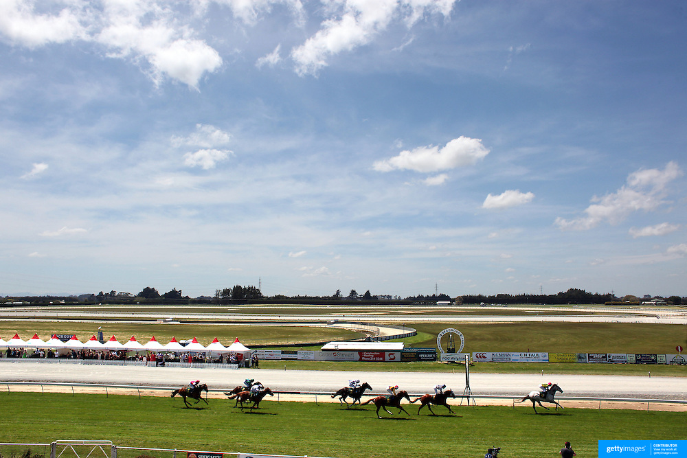 Horses cross the finish line during a day at the Races at Ascot Park, Invercargill, Southland, New Zealand. 10th December 2011. Photo Tim Clayton