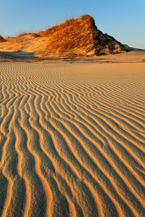Nags Head Dunes, Outer Banks