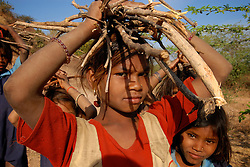 Chitrakoot District, Uttar Pradesh, India: Children uses their heads to carry wood back to their villages in the Chitrakoot District of Uttar Pradesh. In India woman are responsible for carrying out many hard labored tasks.  (Photo by Ami Vitale)