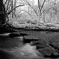 Arkansas Nature
