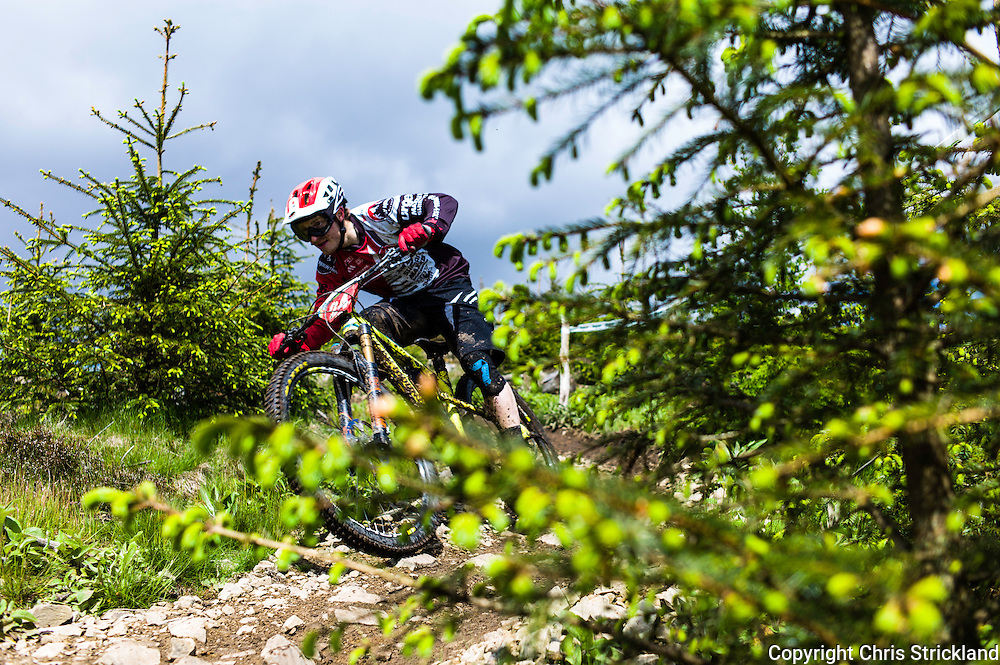 Glentress, Peebles, Scotland, UK. 31st May 2015. Jesse Melamed in action on Stage 8 at The Enduro World Series Round 3 taking place on the iconic 7Stanes trails during Tweedlove Festival. Mountain bikers come up against eight stages across two days, with an intense 2,695 metres of climbing over 93km. As well as the physicality of the liaisons, the stages themselves are technical, catching many off guard.