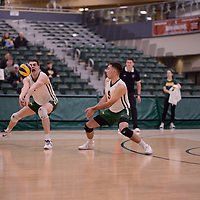 2nd year Right-Side hitter Matthew Aubrey (7) of the Regina Cougars in action during Men's Volleyball home game on February 3 at Centre for Kinesiology, Health and Sport. Credit: Arthur Ward/Arthur Images