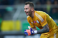 Legia's goalkeeper Arkadiusz Malarz gestuers during T-Mobile ExtraLeague soccer match between Legia Warsaw and Wisla Krakow in Warsaw, Poland.<br /> <br /> Poland, Warsaw, March 15, 2015<br /> <br /> Picture also available in RAW (NEF) or TIFF format on special request.<br /> <br /> For editorial use only. Any commercial or promotional use requires permission.<br /> <br /> Mandatory credit:<br /> Photo by © Adam Nurkiewicz / Mediasport
