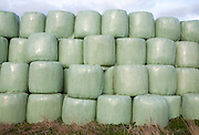 Green plastic containers used to store grass for winter feed for horses, Sutton, Suffolk, England