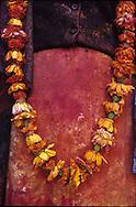 Fleurs sur fleurs<br /> <br /> Prise de vue argentique, tirage en digigraphie sur papier fine art, num&eacute;rot&eacute;e et sign&eacute;e par l&rsquo;artiste, avec certificat.<br /> 250 &euro; le 30x40 cm (15 exemplaires), 580 &euro; le 40x60 cm (10 exemplaires), 890 &euro; le 60x90 cm (3 exemplaires), 1500 &euro; le 80x120 cm (2 exemplaires)<br /> <br /> FESTIVAL DE HOLI A VRINDAVAN, INDE. La fete de Holi ou fete des couleurs est une fete hindouiste qui se tient pour le retour du printemps a la premiere lune de mars : fete de l amour et de la fertilite, elle celebre les amours de Krishna et Radha. Les gens se jettent des poudres de couleur.  // HOLI FESTIVAL IN VRINDAVAN, INDIA. Holi festival is the festival of colors. It is an hinduist festival that takes place every year in march for the arrival of spring. Festival of love and fertility, it celebrates the love between Krishna and Radha. People throw Colored powders.