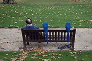 With two pigeons searching for seeds underneath, two blue Macaws sit patiently with their owner on a park bench in Berkeley Square, on 5th November, in London, England.