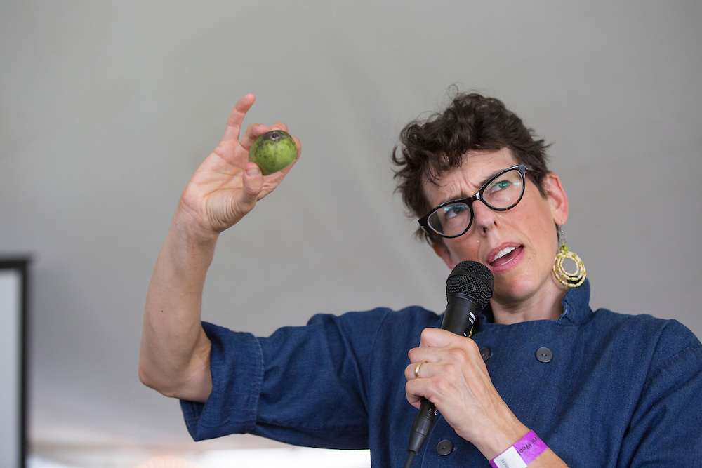 Sara Bir, of Marietta, Ohio, explains how this past year did not yield a good pawpaw season during her cooking workshop at the Pawpaw Festival on Sept. 17, 2016.