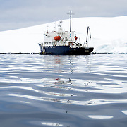 An Antarctic cruise ship, the Polar Pioneer, idles in calm waters near shore near Melchior Island on the western coast of the Antarctic Peninsula. The Polar Pioneer is a Russian ice-strengthened ship operated by Australian company Aurora Expeditions.