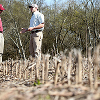 Charlie Stokes, an Agronomist for Northeast Mississippi with the MSU Extension Servies talks with farmer Alex Mayfield as they stand on Mayfield's farmland where he will plant corn for the upcoming season near Okolona.
