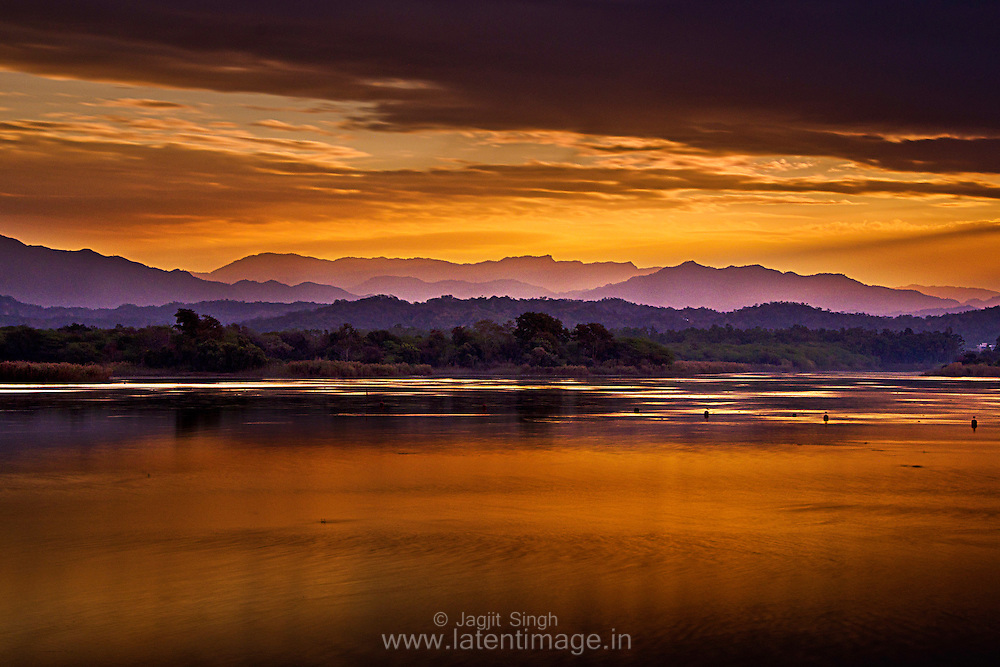 A Golden morning at Sukhna Lake, Chandigarh. Landscapes by Jagjit Singh