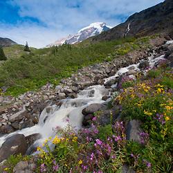 Heliotrope Falls, Mt. Baker Wilderness, Mt. Baker Snoqualmie National Forest, Washington, US