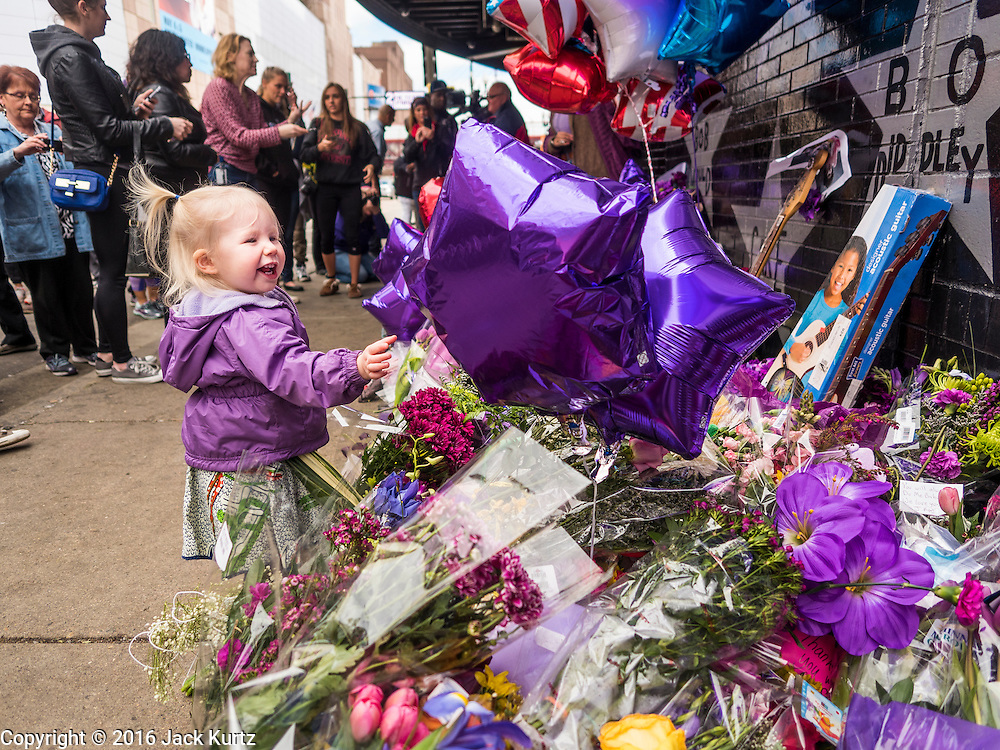 """22 APRIL 2016 - MINNEAPOLIS, MN: A child wearing a purple parka looks at a memorial for Prince in front of 1st Ave in Minneapolis. Minnesotans were urged to wear purple Friday in honor of Prince. Thousands of people came to 1st Ave in Minneapolis Friday to mourn the death of Prince, whose full name is Prince Rogers Nelson. 1st Ave is the nightclub the musical icon made famous in his semi autobiographical movie """"Purple Rain."""" Prince, 57 years old, died Thursday, April 21, 2016, at Paisley Park, his home, office and recording complex in Chanhassen, MN.    PHOTO BY JACK KURTZ"""