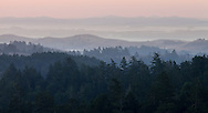 Dawn breaks over the rolling hills of the Sonoma Coast