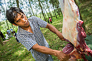 26 OCTOBER 2012 - PULASAIZ, NARATHIWAT, THAILAND: Thai Muslims butcher and divide a bull after it was sacrificed in God's name for the holiday of Eid al-Adha in the villiage Pulasaiz, in the province of Narathiwat, Thailand. The sacrificed cow is butchered and divided into seven portions. The meat is shared with families of lesser means, widows and orphans. It is the one day of the year that some people in the community get to eat beef (In Muslim communities in Thailand, cows are usually sacrificed. In other Muslim countries it is often sheep.) Eid al-Adha, also called Feast of the Sacrifice, is an important religious holiday celebrated by Muslims worldwide to honor the willingness of the prophet Ibrahim (Abraham) to sacrifice his firstborn son Ishmael as an act of submission to God, and his son's acceptance of the sacrifice before God intervened to provide Abraham with a ram to sacrifice instead. In 2012 Eid al-Adha was celebrated Oct 25 - 26.     PHOTO BY JACK KURTZ