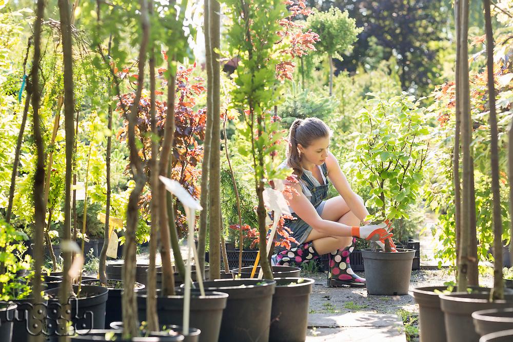 Woman planting pot at garden center