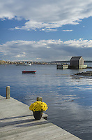 Boat dock with flowers Blue Rocks Nova Scotia