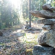 Ian Stewart/Yukon News<br /> Rock cairns line a forest trail near Lobird.