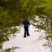 Wilderness State Park Remote Snowshoe Trail
