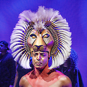 NLD/Amsterdam/20160216 - Musical The Lion King is terug!, Simba