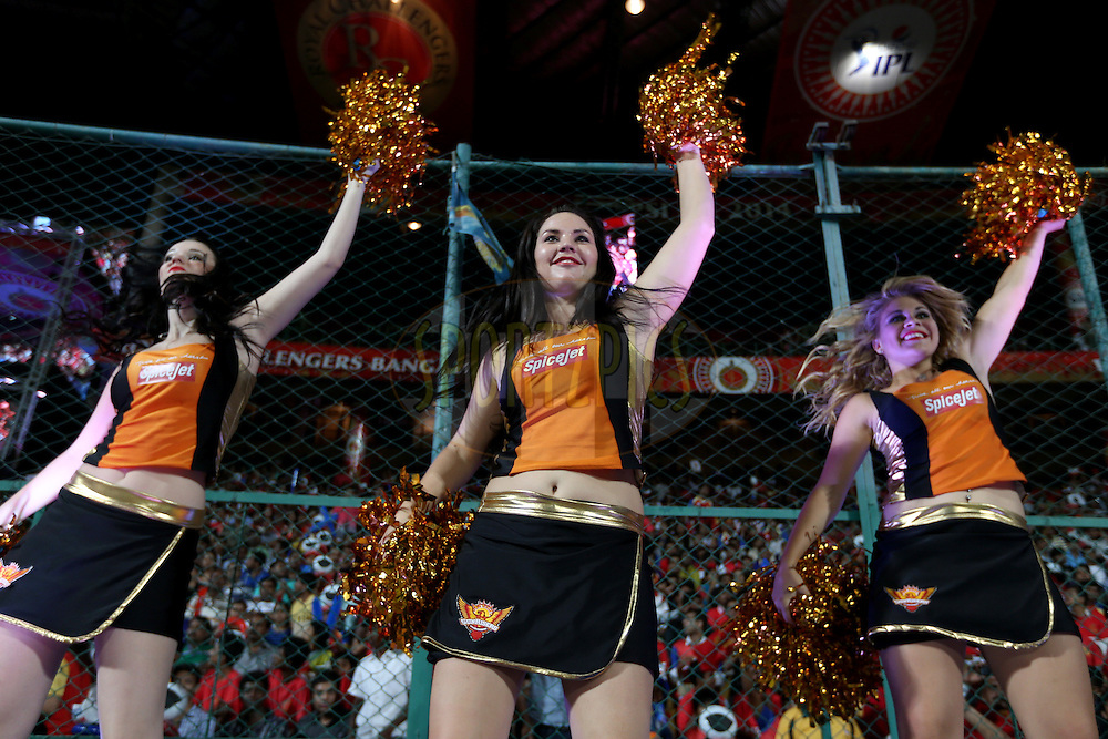 Spicejet SH cheerleaders during match 24 of the Pepsi Indian Premier League Season 2014 between the Royal Challengers Bangalore and the Sunrisers Hyderabad held at the M. Chinnaswamy Stadium, Bangalore, India on the 4th May 2014. Photo by Jacques Rossouw / IPL / SPORTZPICS<br /> <br /> <br /> <br /> Image use subject to terms and conditions which can be found here:  http://sportzpics.photoshelter.com/gallery/Pepsi-IPL-Image-terms-and-conditions/G00004VW1IVJ.gB0/C0000TScjhBM6ikg