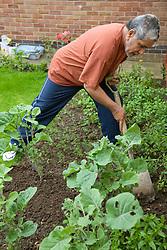 Older man digging his garden,