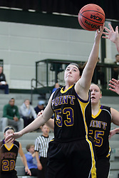 12 December 2015:  Allie Miceli during an NCAA women's basketball game between the Wisconsin Stevens Point Pointers and the Illinois Wesleyan Titans in Shirk Center, Bloomington IL