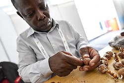 "11 May 2017, Windhoek, Namibia: Erwin Eichab carves Makalani necklaces from the fruits of a palm tree, in the Omatala, an open space at the Lutheran World Federation's Twelfth Assembly, for exhibitions, workshops, and informal encounters. The Twelfth Assembly of the Lutheran World Federation gathers in Windhoek, Namibia, on 10-16 May 2017, under the theme ""Liberated by God's Grace"", bringing together some 800 delegates and participants from 145 member churches in 98 countries."