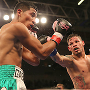 """Orlando """"El Fenomeno""""  Cruz (R) punches Gabino """"Flash"""" Cota during their Boxeo Telemundo WBO/NABO Super Featherweight bout on Friday, October 9, 2015 at the Kissimmee Civic Center in Kissimmee, Florida. Cruz, who is from Puerto Rico, is the first ever openly gay boxer  in the history of the sport and won the bout by unanimous decision.  (Alex Menendez via AP)"""