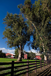 The Red Barn with fence and large trees, Stanford University, Stanford California, United States of America.