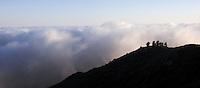 Panoramic Photo of Summer Fog, Mount Tamalpais State Park, California