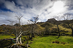The Fairy Glen, (Glen Uig),  Trotternish Peninsula,  Isle of Skye, Scotland<br /> <br /> (c) Andrew Wilson | Edinburgh Elite media