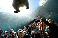 20130425 HS Travelstory ZOO København Arctic Circle