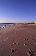 Beach, Amelia Island, Florida<br />