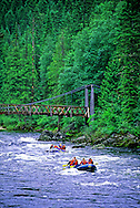 Rafting the Lochsa River in summer. north-central Idaho.