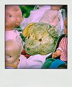 Nederland, Gendt, 10-8-2012Poppen en een teddybeer op een rommelmarkt.Foto: Flip Franssen